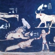 Detail of the astronomical ceiling in tomb KV17 of Sethy I