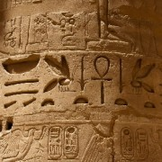 The Language of the Pharaohs