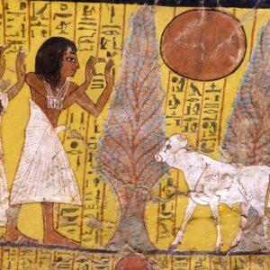 Summer School 1 'Egypte en de Bijbel'