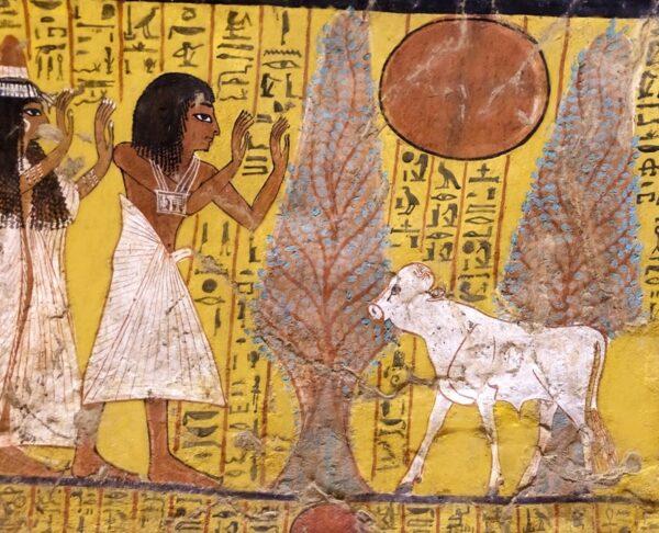 Online Summer School 'Egypte en de Bijbel'